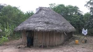 Tradičný dom