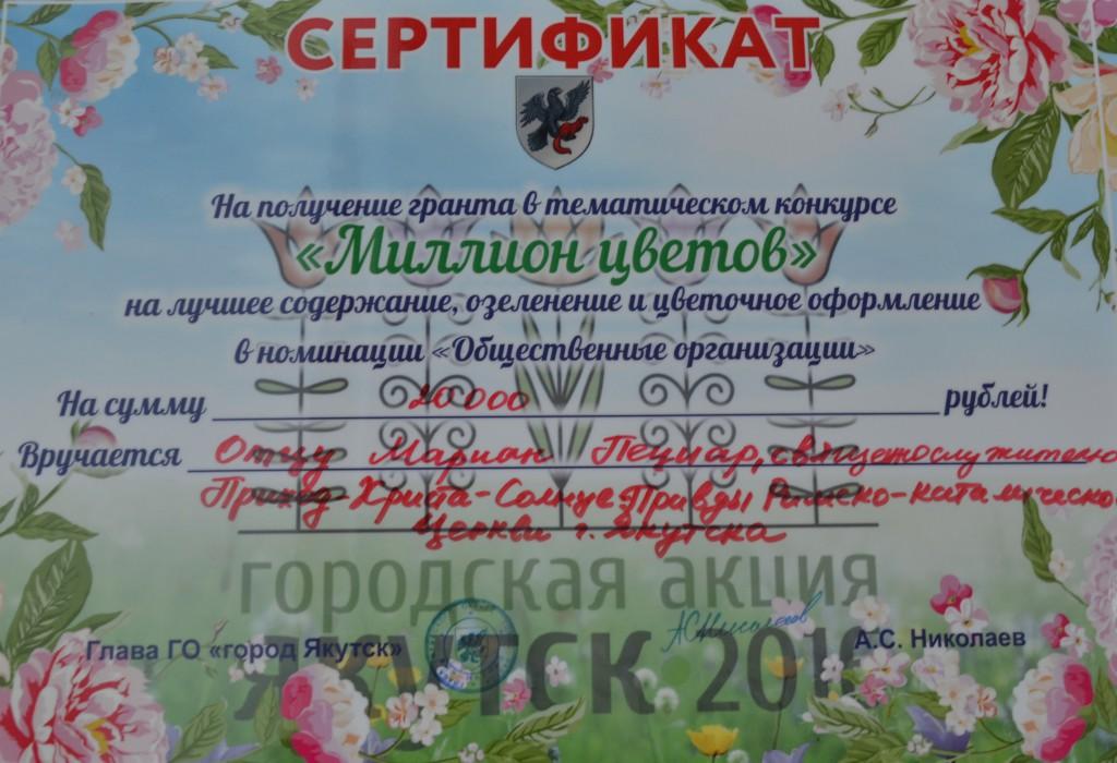 DSC_4129kopia
