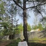 Panna Mária pod prírodným baldachýnom